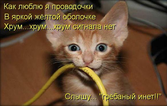 «Сетевой кабель не подключен»